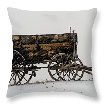 Forgotten Throw Pillow by Alana Thrower