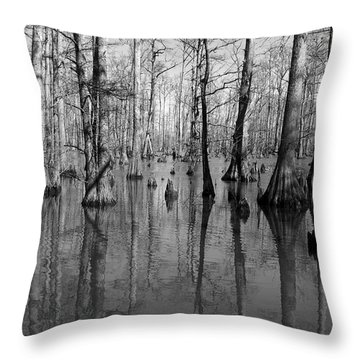 Forgotten - Black And White Art Print Throw Pillow by Jane Eleanor Nicholas
