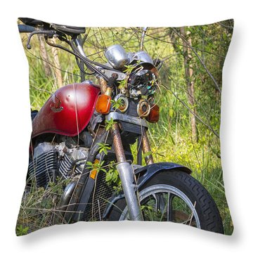 Forgotten  Throw Pillow