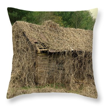Forgotten Cabin Throw Pillow