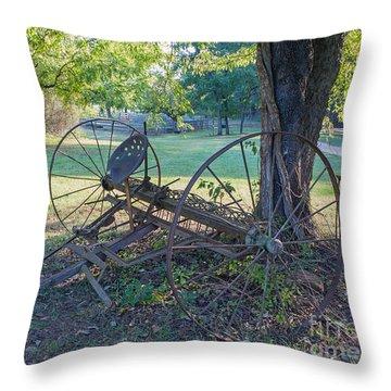 Forgotten Farm Throw Pillow