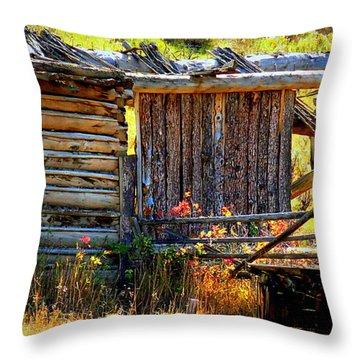 Throw Pillow featuring the photograph Forgotten Garden by Karen Shackles