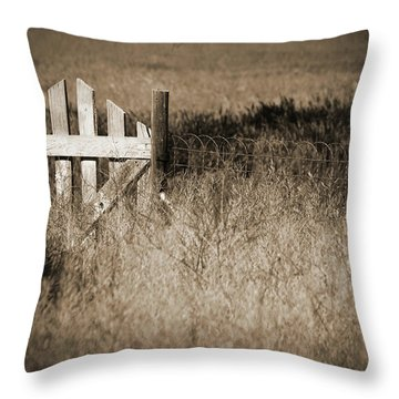 Forgotten Gateway Throw Pillow