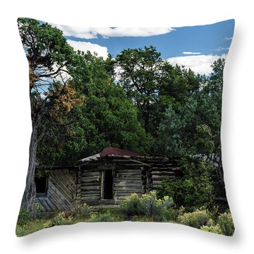 Forgotten Homestead - 8783 Throw Pillow