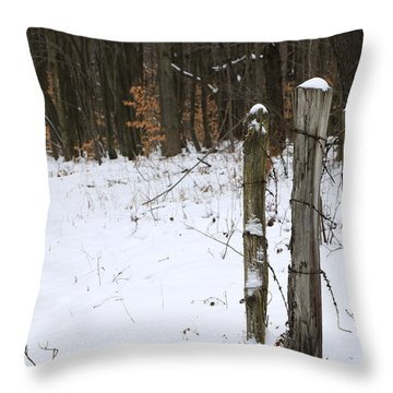 Throw Pillow featuring the photograph Forgotten Posts by Rick Morgan