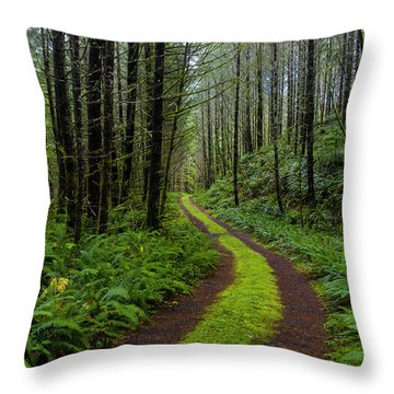 Forgotten Roads Throw Pillow