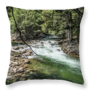 Fork In The Road- Throw Pillow