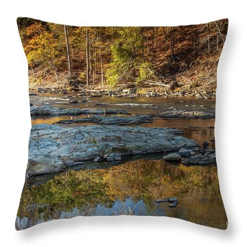 Throw Pillow featuring the photograph Fork River Reflection In Fall by Iris Greenwell