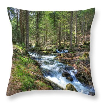 Forked Stream Throw Pillow