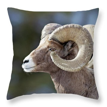 Formation Throw Pillow