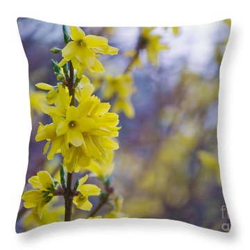 Throw Pillow featuring the photograph Forsythia by Rima Biswas