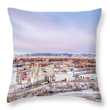 Fort Collins Aeiral Cityscape Throw Pillow