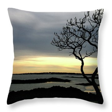 Fort Foster Throw Pillow