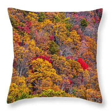 Fort Mountain State Park Cool Springs Overlook Throw Pillow by Bernd Laeschke
