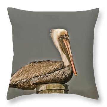 Fort Pierce Pelican Throw Pillow