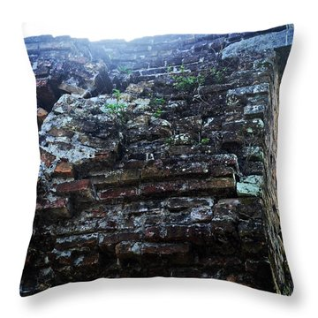 Fortification Vegetation Throw Pillow