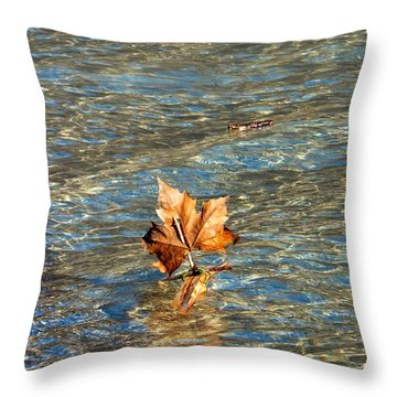 Throw Pillow featuring the photograph Fortune Sur L'eau by Marc Philippe Joly