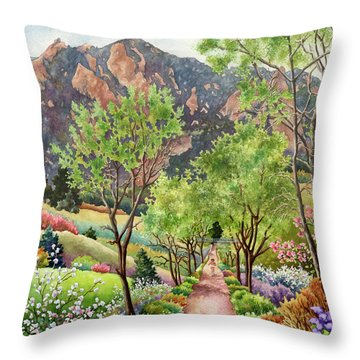 Forty Years Running Throw Pillow