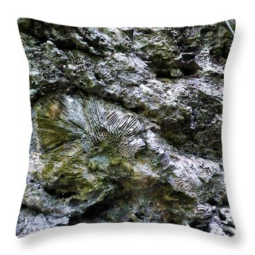 Throw Pillow featuring the photograph Fossil In The Wall by Francesca Mackenney