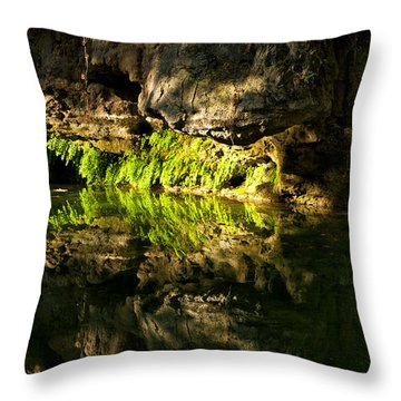 Fossil Reflecting Pool Throw Pillow