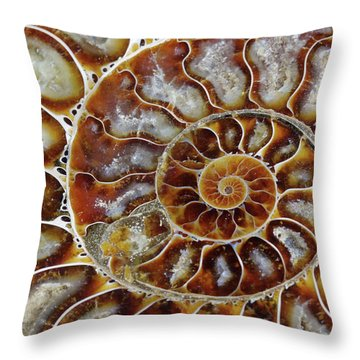 Fossilized Ammonite Spiral Throw Pillow