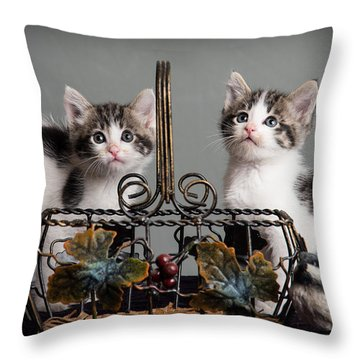 Foster Kittens Throw Pillow