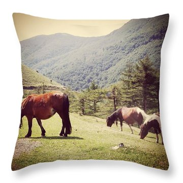 Found These Gorgeous Mountain Ponies In Throw Pillow