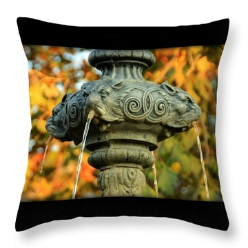 Throw Pillow featuring the photograph Fountain At Union Park by Chris Berry