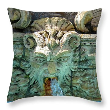 The Fountain Throw Pillow