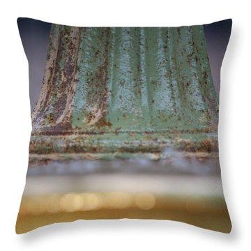 Fountain II  Throw Pillow by Dustin K Ryan