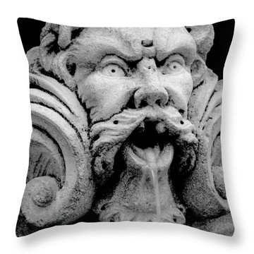 Fountain One  Bw Throw Pillow