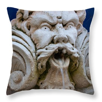 Fountain One Throw Pillow