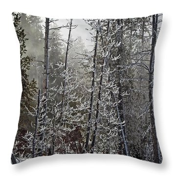 Fountain Paint Pots Shrouded In Snow And Ice Throw Pillow