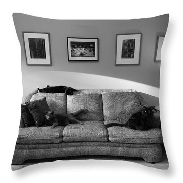 Four Cats Throw Pillow