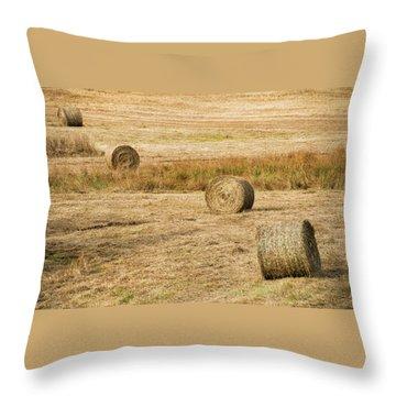 Four Hay Balls -  Throw Pillow