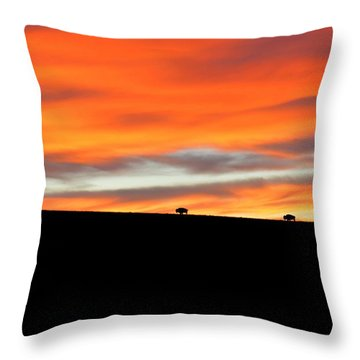 Four Kings Of The American Plains Throw Pillow