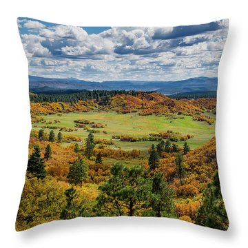 Four Mile Road Peak Color Throw Pillow