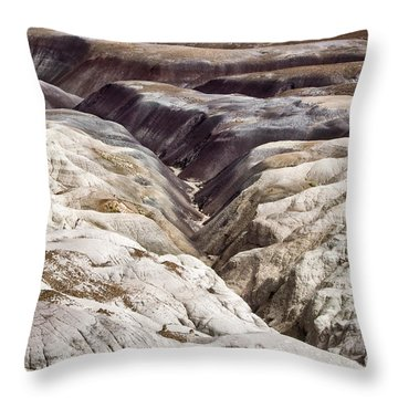 Four Million Geologic Years Throw Pillow