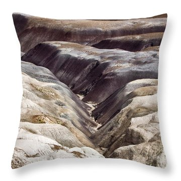 Throw Pillow featuring the photograph Four Million Geologic Years by Melany Sarafis