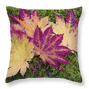 Four Of A Kind Throw Pillow by Elvira Butler