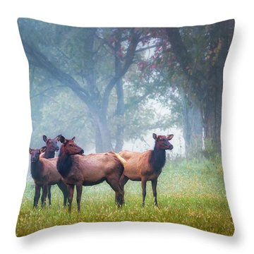 Throw Pillow featuring the photograph Four Of A Kind by James Barber