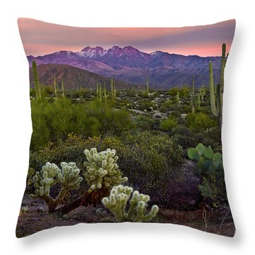 Horizontal Throw Pillows