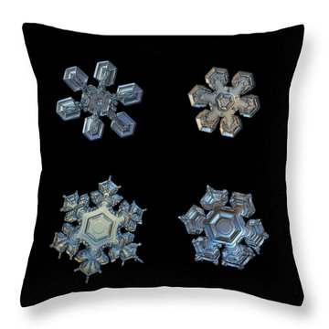 Four Snowflakes On Black 2 Throw Pillow