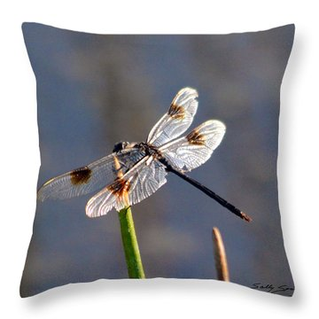 Throw Pillow featuring the pyrography Four Spotted Pennant On A Reed by Sally Sperry