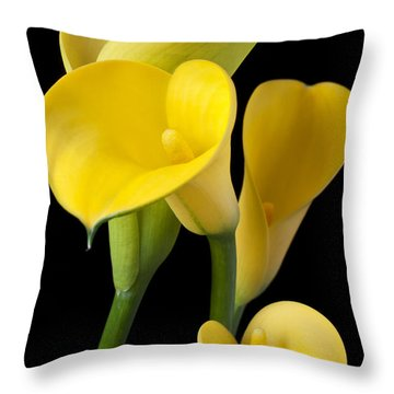 Four Yellow Calla Lilies Throw Pillow by Garry Gay