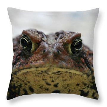 Fowler's Toad #3 Throw Pillow