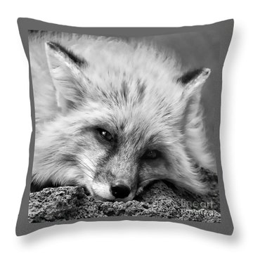 Fox Head Black And White Square Format Throw Pillow by Laurinda Bowling