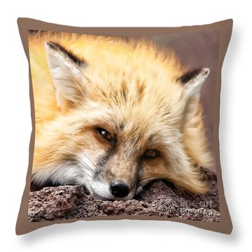 Fox Head Study In Square Format Throw Pillow by Laurinda Bowling