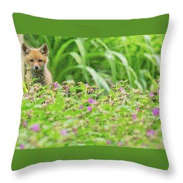 Fox In The Garden Throw Pillow by Everet Regal