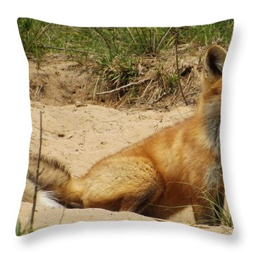 Fox In The Woods 2 Throw Pillow